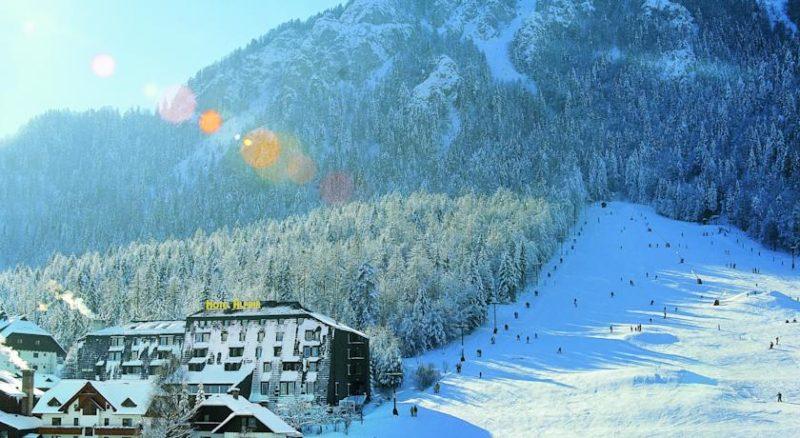 alpina, KRANJSKA GORA