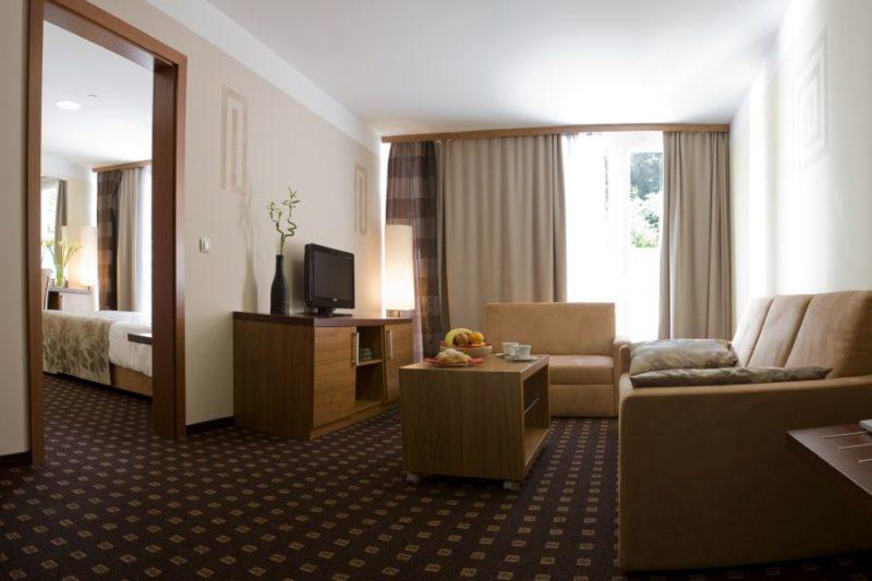 AQUAPARK ŽUSTERNA HOTEL,KOPAR, 1